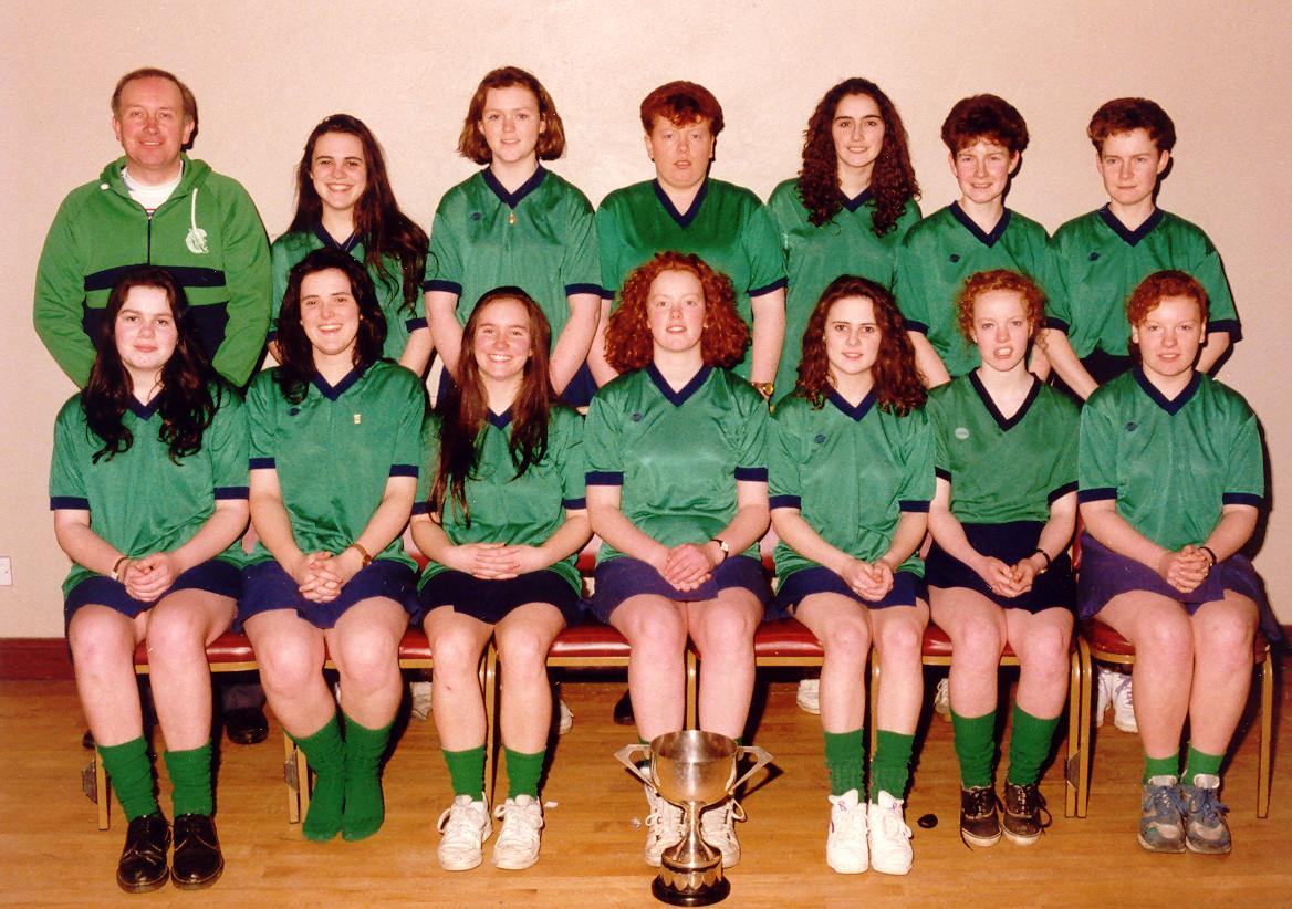 1988 in camogie